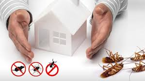 Benefits of Pest Control