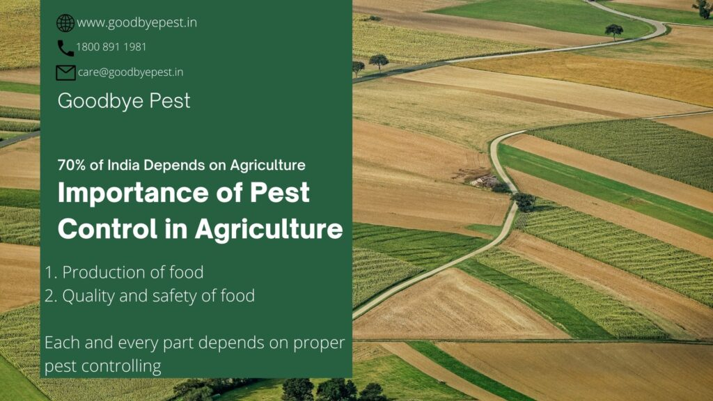 pest affected agriculture