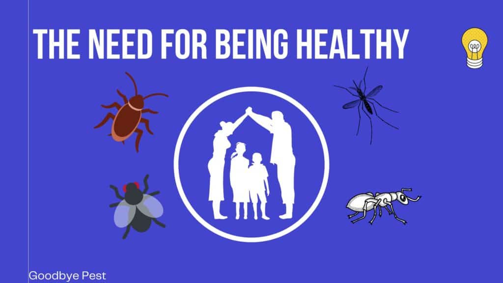 Keeping Family Healthy From Pests